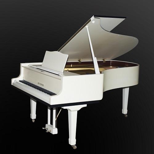 блютнер рояль2