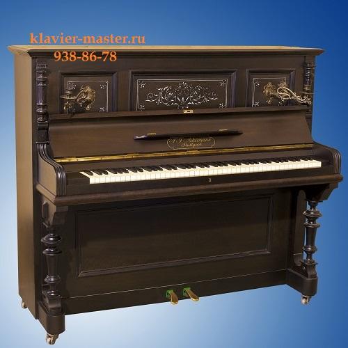 pianino-v-pitere-akkerman2